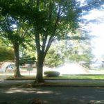 馬場記念公園(蓮町公園)